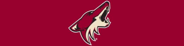 Arizona Coyotes logo 600x150