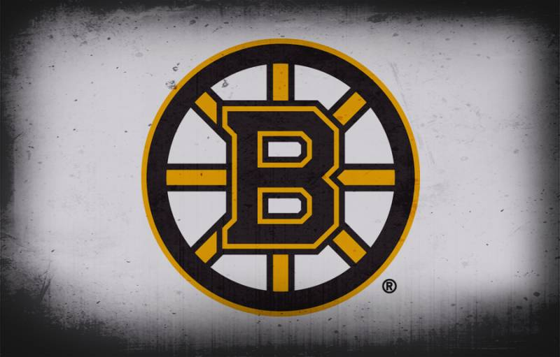 2016-17 top 10 Boston Bruins prospects