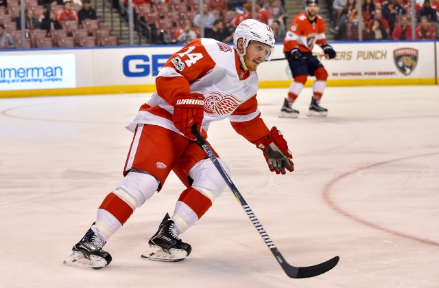 After 3rd period rally, Reds Wings fall in OT | NHL