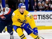 Top 2018 NHL draft prospect: Isac Lundestrom
