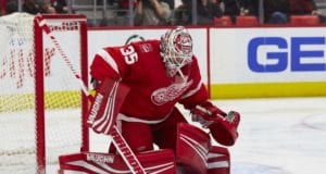 Looking at the Detroit Red Wings goaltending options for next seasonS