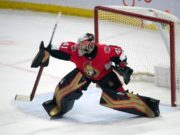 Ottawa Senators goaltender Craig Anderson has an upper-body injury.