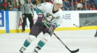 Sergei Fedorov Anaheim Ducks